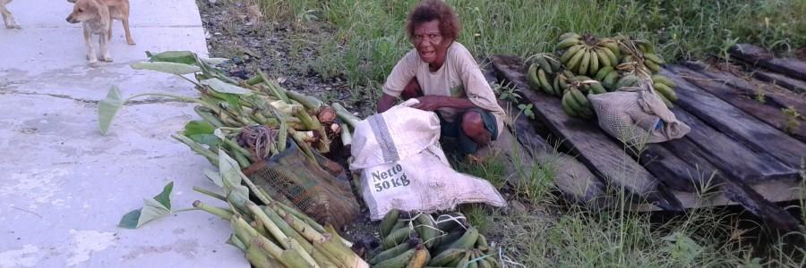 Kegiatan PNPM di Papua